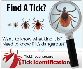 Tick identification chart banner
