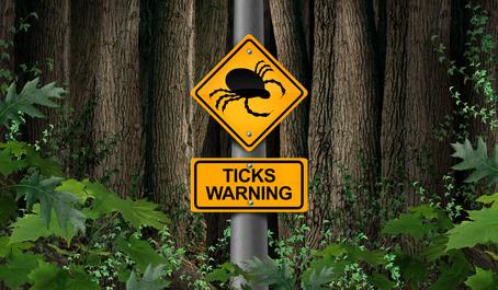 tick control