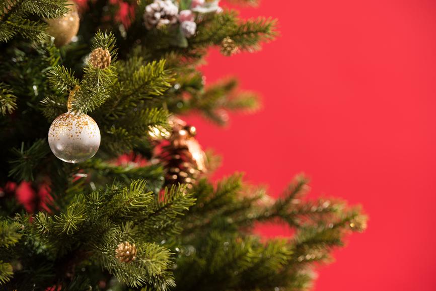 ticks on your Christmas tree
